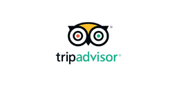 Tripadvisor User